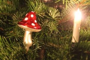 Weihnachtspilz