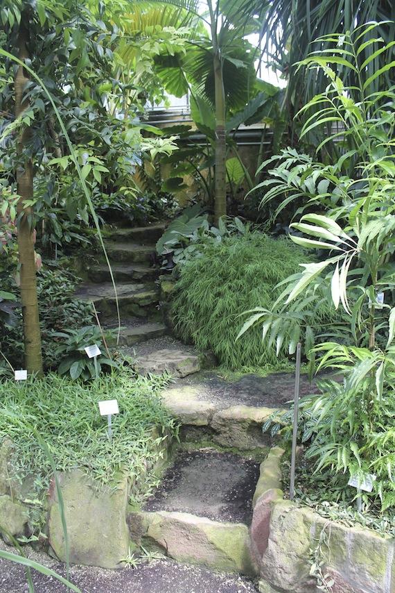 Botanischer Garten Heidelberg