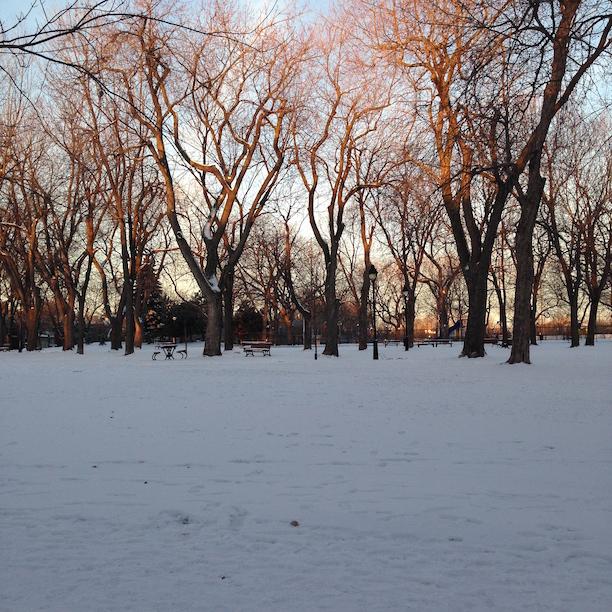 Schnee Montreal